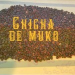 How to Brew Chicha: Corn beer of South America